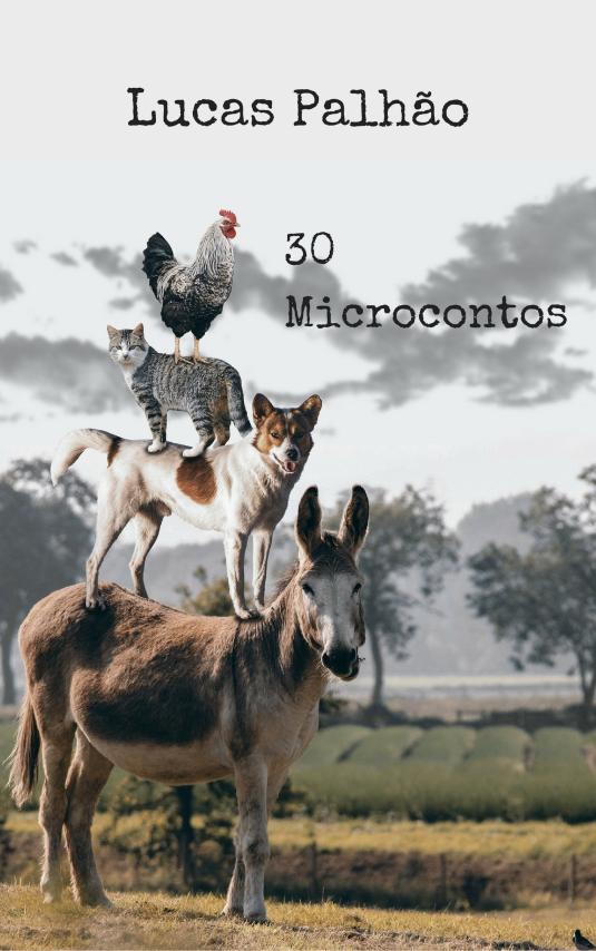 30 Microcontos_capa.jpg